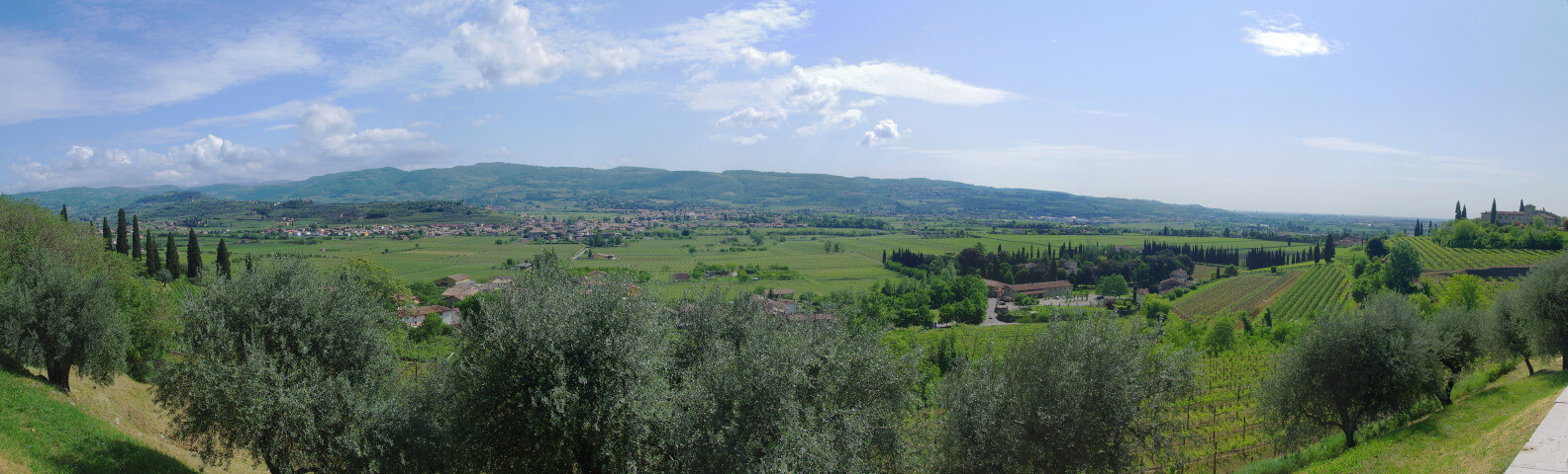 Valpolicella Wine & Food - only from EAST coast